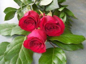 Ý nghĩa của 3 bông hồng, bạn có biết?